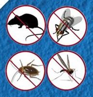 Отпугиватели грызунов и насекомых